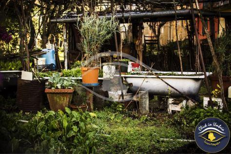 Umbria cuore verde | Click in Umbria - Turismo fotografico
