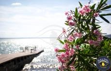 "Workshop fotografico ""Lago Trasimeno"" | Click in Umbria - Turismo fotografico"